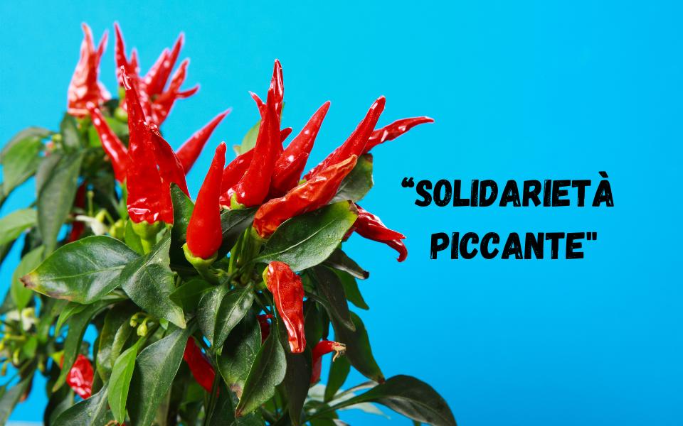 solidariet-piccante
