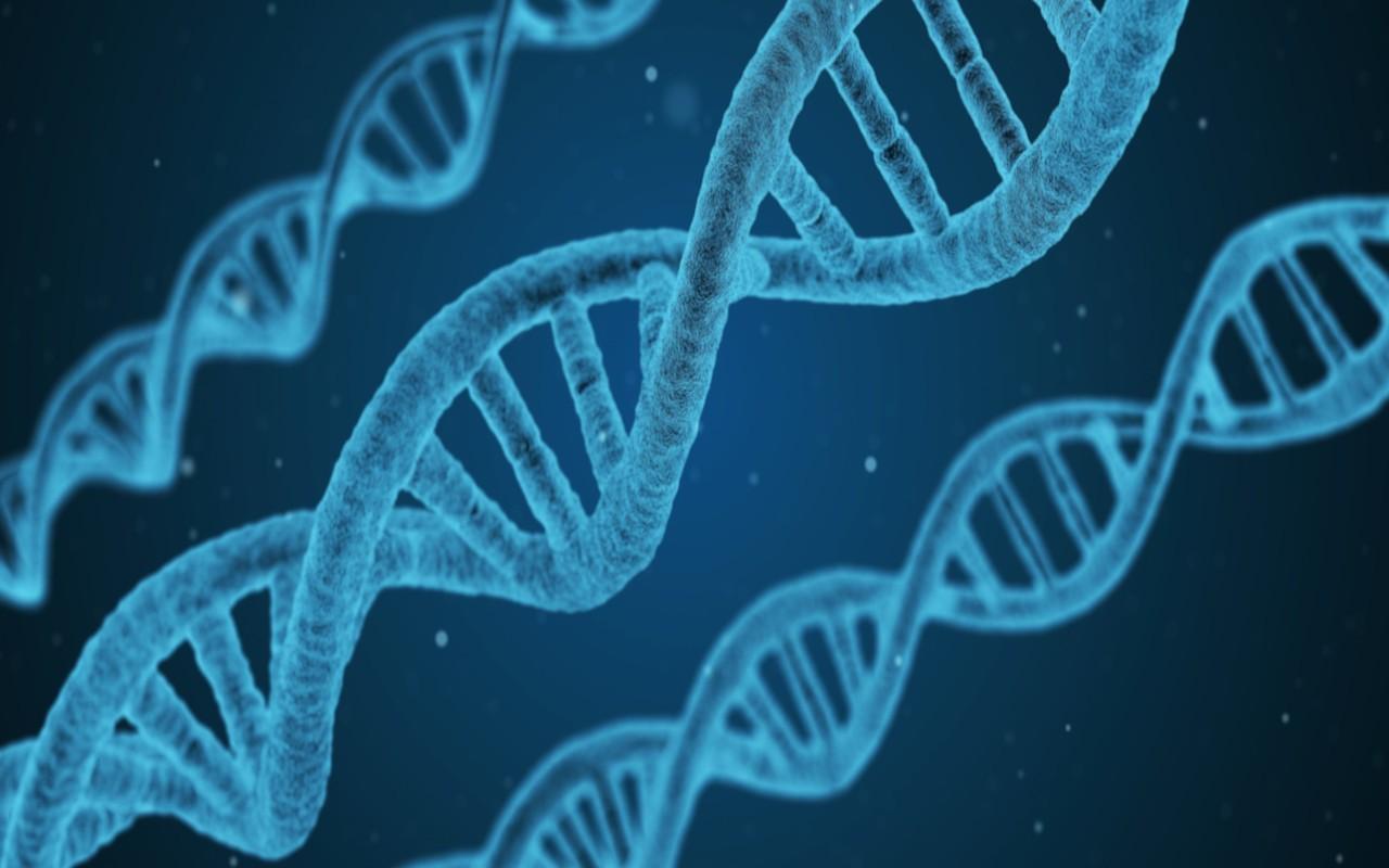 102 geni associati alla patologia